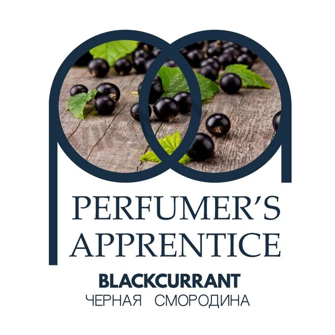 The Perfumer's Apprentice Blackcurrant (Черная смородина)