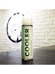 Жидкость для вейпа Cooler Кактусовая Жвачка